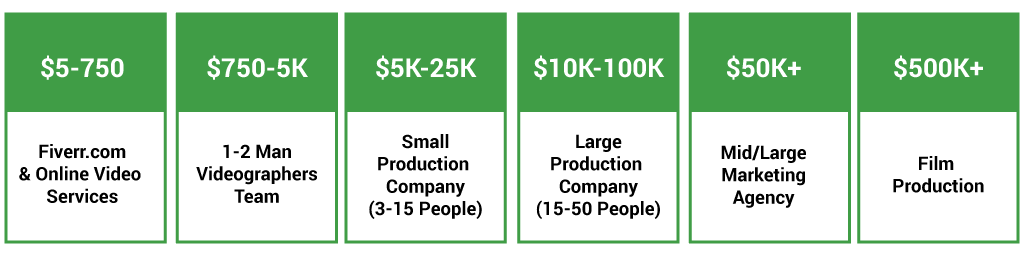 Video Company Types